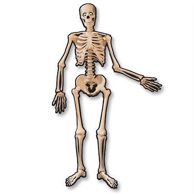 Баннер Скелет подвижный 1,4м