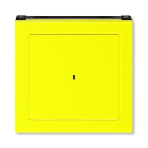 Лицевая панель карточного выключателя. Цвет Жёлтый / дымчатый чёрный. ABB. Levit(Левит). 2CHH590700A4064