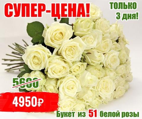 51 белая роза #2435