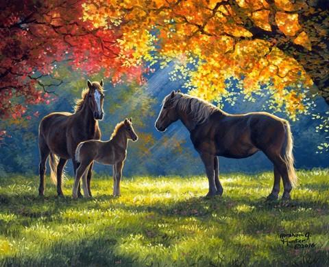 Картина раскраска по номерам 50x65 Семейство лошадей