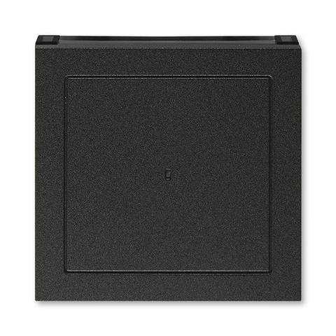 Лицевая панель карточного выключателя. Цвет Антрацит / дымчатый чёрный. ABB. Levit(Левит). 2CHH590700A4063