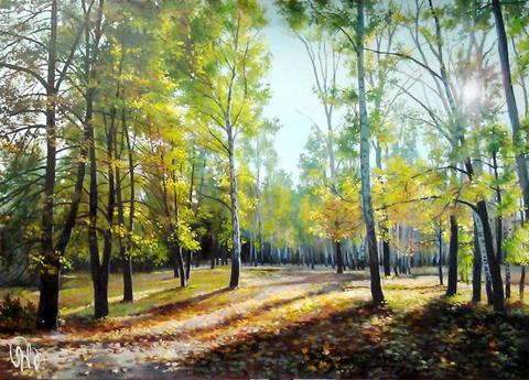 Картина раскраска по номерам 50x65 Вид из леса