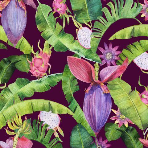 Акварельные тропики: банан и драгонфрут