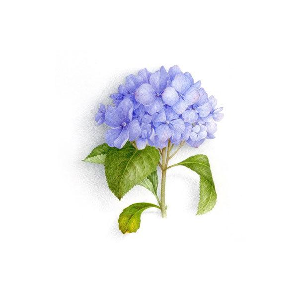 Водорастворимая бумага Синие цветы