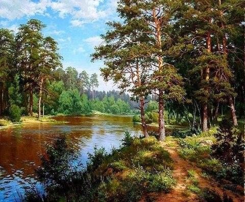 Алмазная Мозаика 40x50 Прогулка вдоль реки (арт. TCH8044)