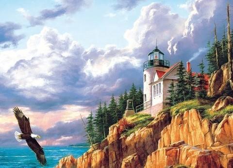 Алмазная Мозаика 40x50 Орел летит у дома на горе (арт. TC3378)