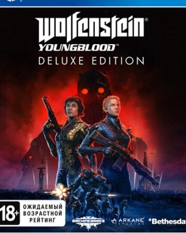 Плакат игровой Wolfenstein: Youngblood (А1)