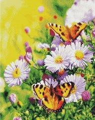 луг-ромашки-бабочки-алмазная-мозаика-