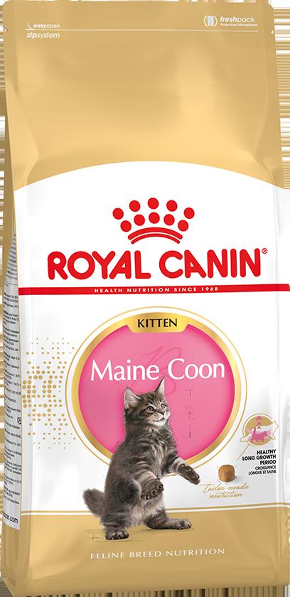 Сухой корм Корм для котят породы мейн-кун, Royal Canin Maine Coon Kitten, с птицей mainecoonkitten.png