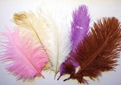 Перья страуса  декоративные (Уценка) 15-20 см.(цена за 1 шт.) (выбрать цвет)