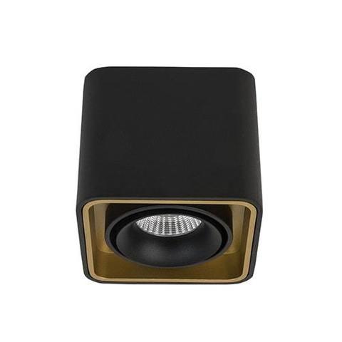 LeDron TUBING Black/Gold фото