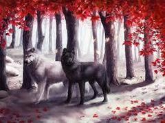 Картина раскраска по номерам 40x50 Волки в осеннем лесу