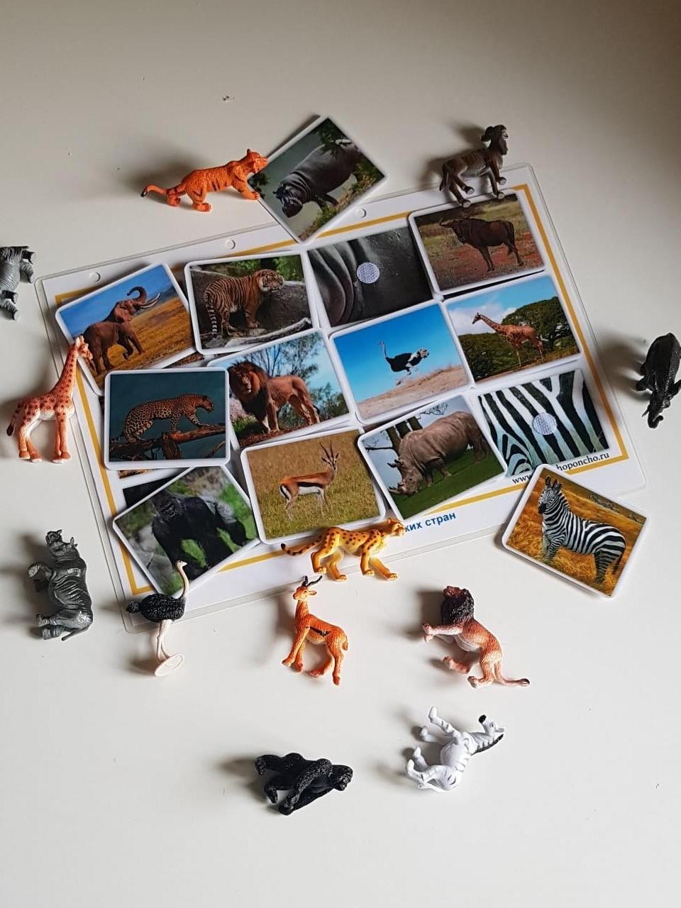 Животные Жарких Стран. Без фигурок. Развивающие пособия на липучках Frenchoponcho (Френчопончо)