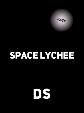 Аксессуар DS BASE SPACE LYCHEE 100