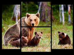 """Модульная картина """"Медведи в лесу"""""""