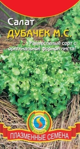 Семена Салат Дубачек листовой