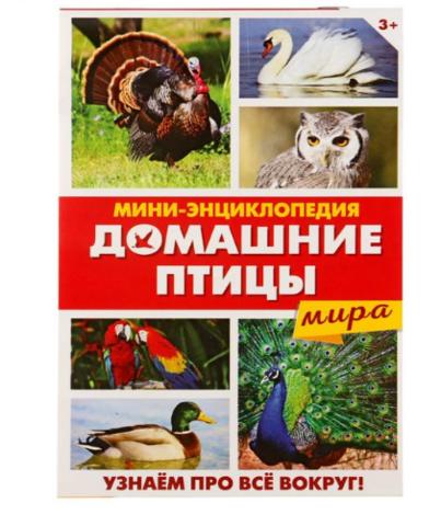 071-0207 Мини-энциклопедия «Домашние птицы мира», 20 страниц