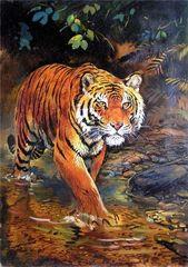 Картина раскраска по номерам 30x40 Тигр на охоте
