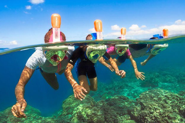 Вы сможете рассматривать кораллы и рыбок