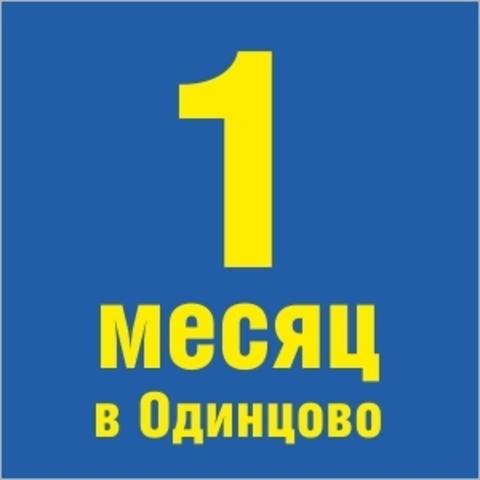 https://static-ru.insales.ru/images/products/1/576/43532864/site_orange_sekcii_new4.jpg