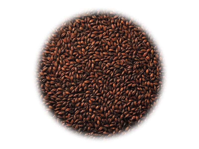 Солод Солод Viking Chocolate (Шоколад) 767_P_1444056322251.jpg