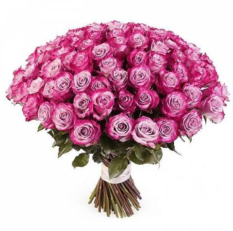 Букет из 75 сиреневых роз (Голландия 60 см)