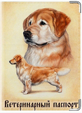 """Обложка для ветеринарного паспорта """"Ветеринарный паспорт"""" (10)"""