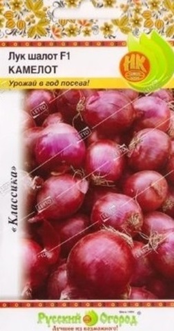 Семена Лук Шалот Камелот