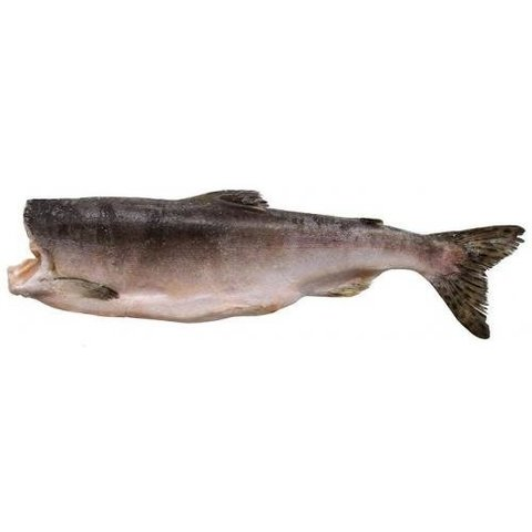 Горбуша, без головы, потрошенная, Камчатка (Цена указана за 1 кг.)