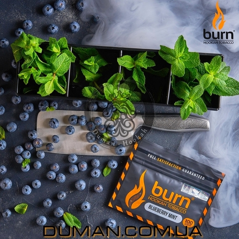 Табак Burn Blueberry Mint (Берн Черника с Мятой)