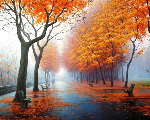 Алмазная Мозаика + Багет 30x40 Осенний парк