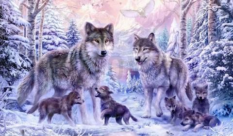 Алмазная Мозаика + Багет 30x40 Волки с волчатами зимой