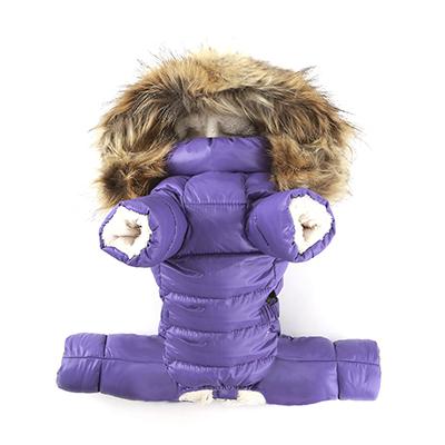 зимняя одежда для маленьких собак