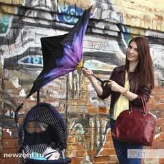 Зонт-наоборот георгин фиолетовый механический