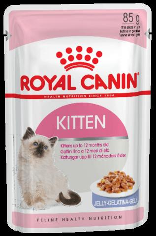 Корм для кошек Royal Canin  Kitten (в желе) 85 г
