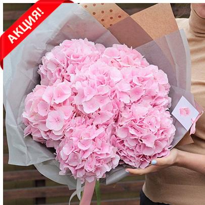 Купить букет розовых гортензий в Перми