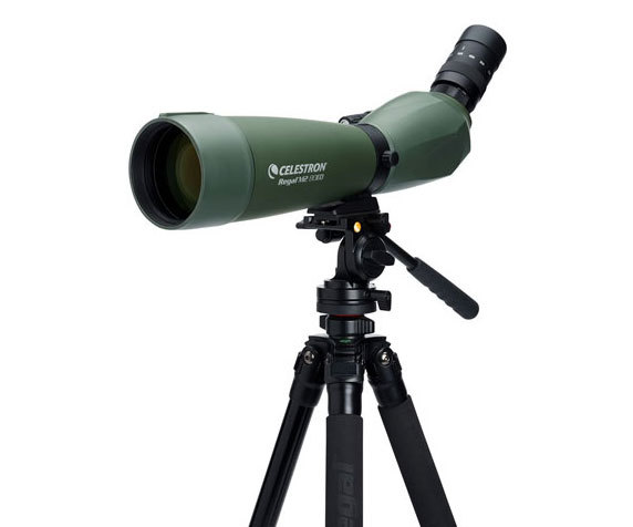 Celestron Regal M2 80 на штативе