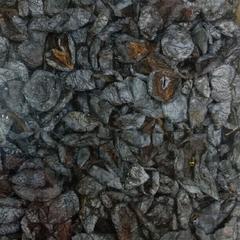 Чернослив без косточки резаный (Узбекистан) / 250 г