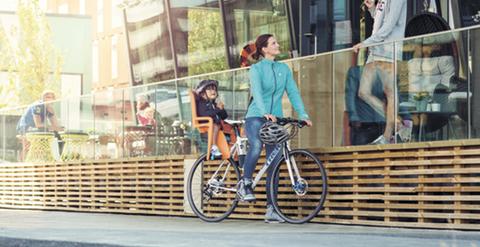 Картинка велокресло Thule RideAlong темно-серое