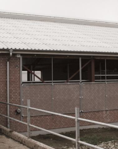 140х50 метров | Вентиляционные панели из поликарбоната для коровников
