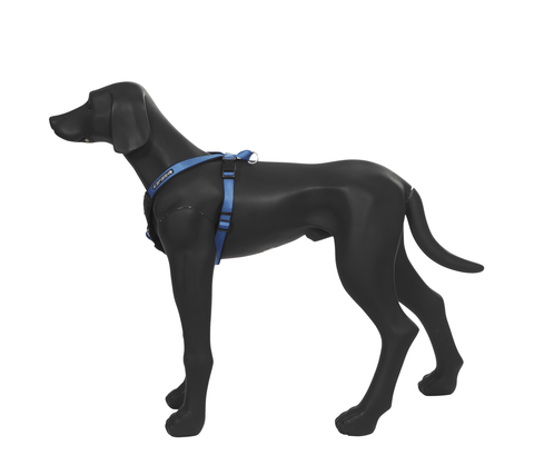 Шлейка ICEPEAK PET PROZONE SUPER HARNESS, размер L, синяя