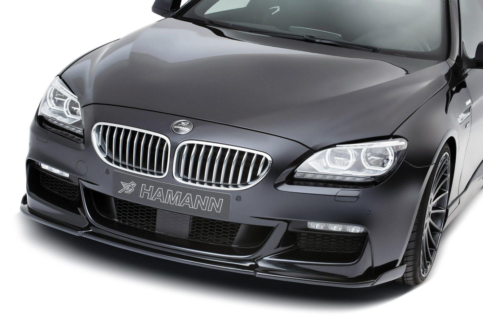 Карбоновый спойлер переднего бампера Hamman Style для BMW 6er
