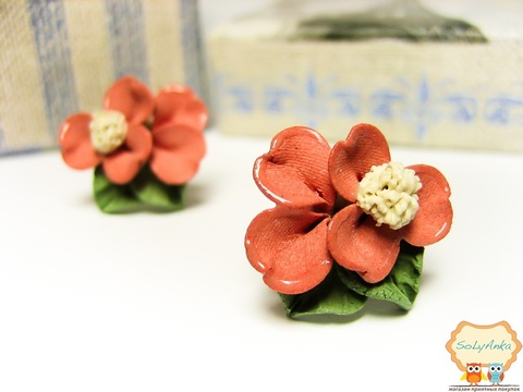 Порцелянові сережки Примула рожева