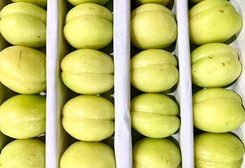 Абрикосы Белые, 1 кг