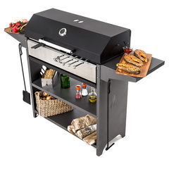 Professional Optima BBQ