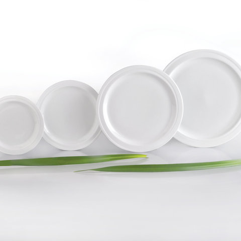 2пр набор тарелок круглых 308мм Hotel