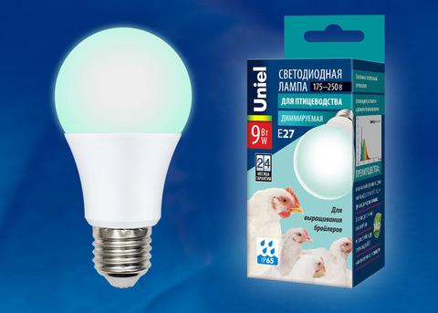 LED-A60-9W/SCBG/E27/FR/DIM IP65 PLO65WH Лампа светодиодная диммируемая для бройлеров. Спектр синий и зеленый. TM Uniel.