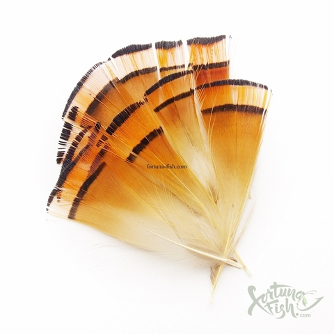 Шейные перья золотого фазана Golden Pheasant Tippets (12 шт)