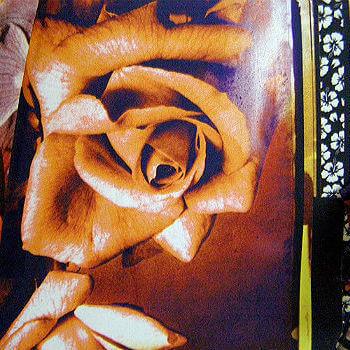 Зонт складной JP Gaultier 1185 Fleurs