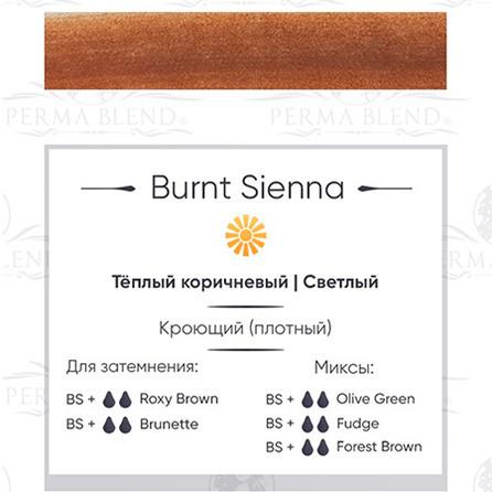 Perma Blend Burnt Sienna